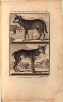 Sayfa 264