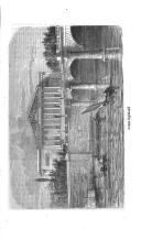 Sayfa 595