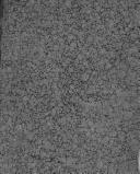 Başlık Sayfası