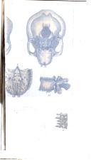 Sayfa 677