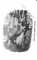 Sayfa 356