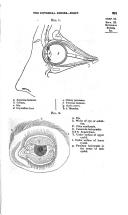 Sayfa 291