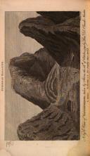 Sayfa 64
