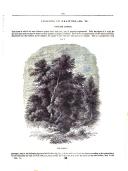 Sayfa 317