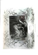 Sayfa 791