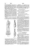 Sayfa 846