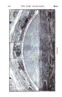 Sayfa 504