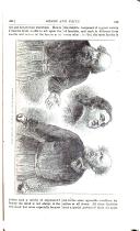 Sayfa 239
