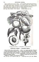 Sayfa 574