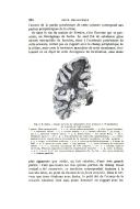 Sayfa 254