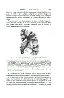 Sayfa 255