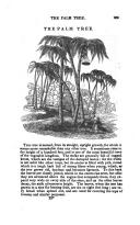Sayfa 269