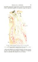 Sayfa 139