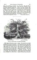 Sayfa 591