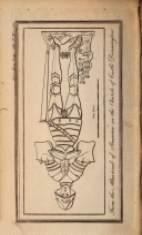 Sayfa 1155