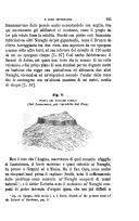 Sayfa 295